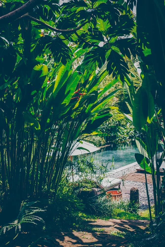 Bali Reiseguide – Teil 2 Canggu