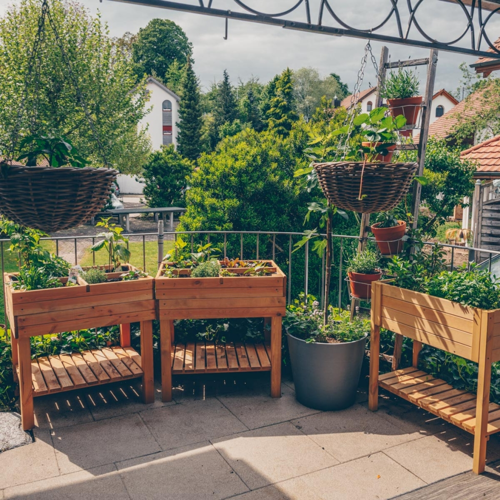 Mein Balkon und City Farming Paradies